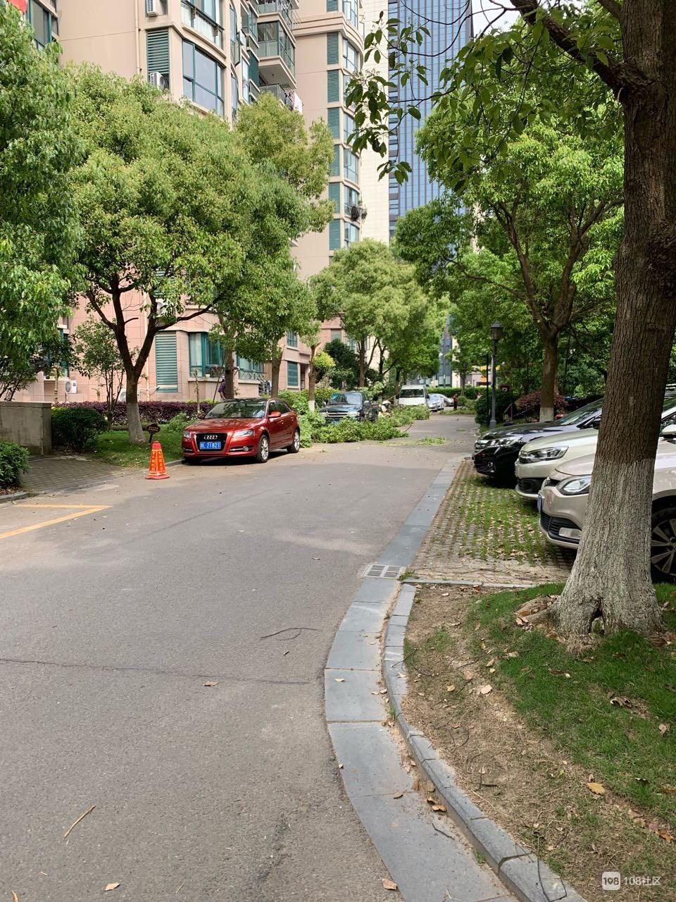 东港小区里的树能随便砍吗?
