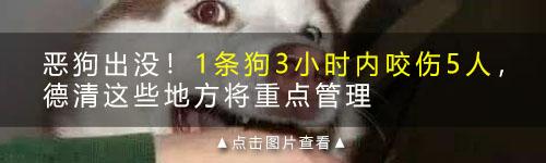 德清每天竟有25人因犬咬伤进医院!被咬血肉模糊是我阴影