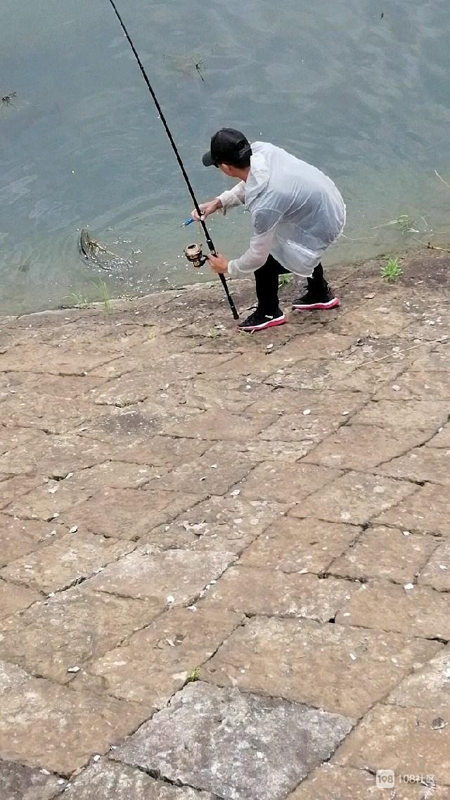 这样的钓鱼高手你见过吗?一会就钓上两三斤的黑鱼