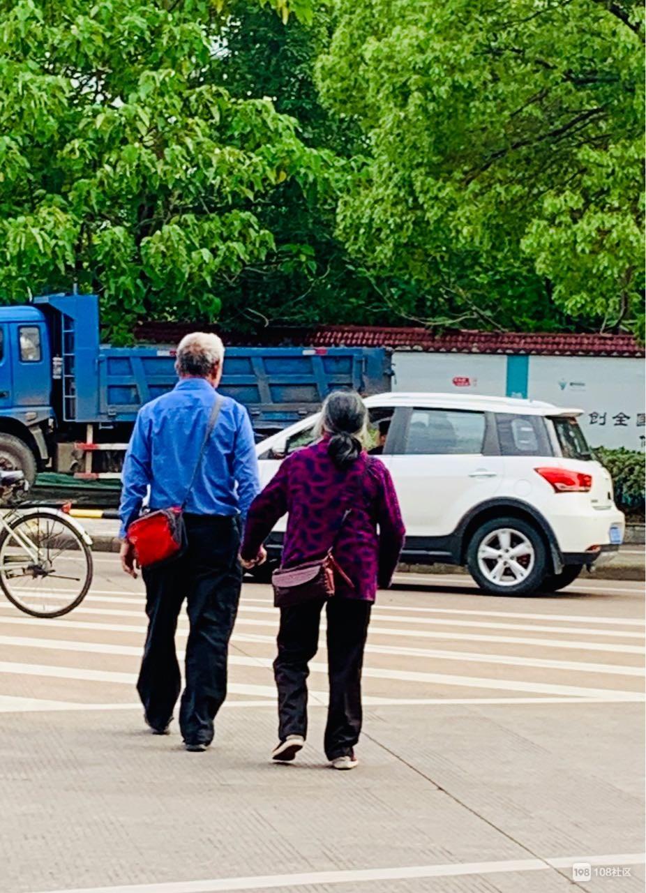 从不羡慕街角拥吻的情侣,我只羡慕牵手散步的老人