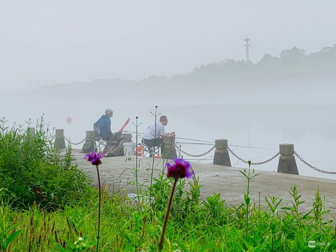 雾气缭绕的乌溪江,仿佛踏入天宫仙境!